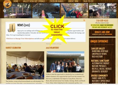 olt-newsletter-link-copy