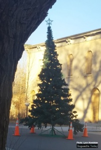 The Annual Tree Lighting Ceremony will be hedl this Satutday in downtown Saguache. Photot: Saguache Today/Lynn Nowiskee