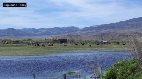 Water, it's the life source of Saguache Today and th entire San Luis Valley. Photo: Saguache Today/Kathy Bedell