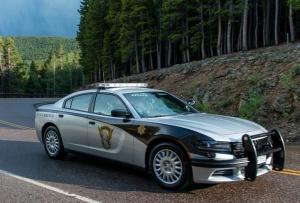 patrol car (1)
